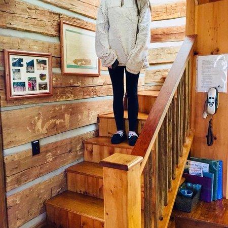 Boyd Mountain Log Cabins: photo2.jpg