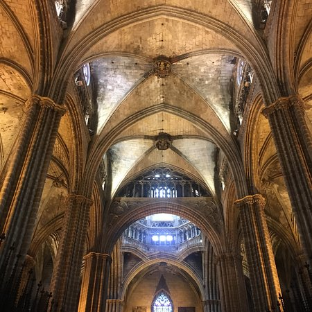 Catedral de Barcelona: photo2.jpg