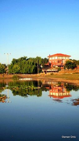 Buldan照片