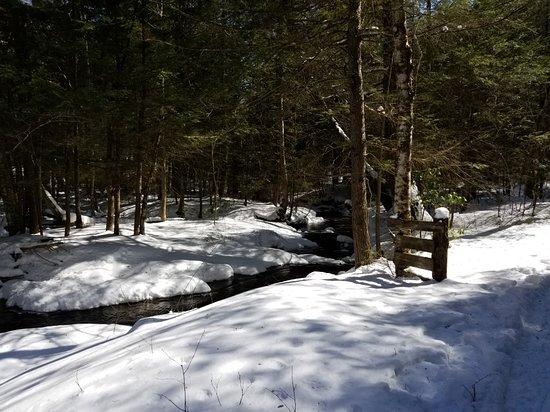 Maple Corner Farm Cross Country Ski Area: 20180317_111339_large.jpg