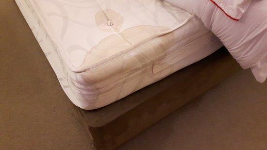 Clumber Park, UK: Room 72 mattress - stained an no springs