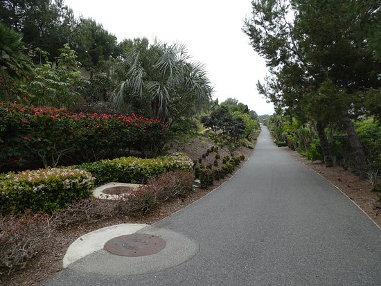 Dana Point, Kaliforniya: Do not miss this path which begins near the monument