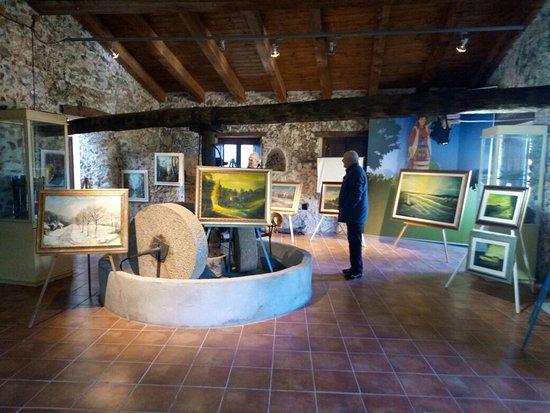 Museo dell'olio d'oliva e della Civilta Contadina