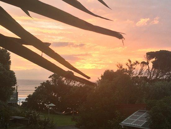 Te Henga (Bethells Beach), Nowa Zelandia: photo0.jpg