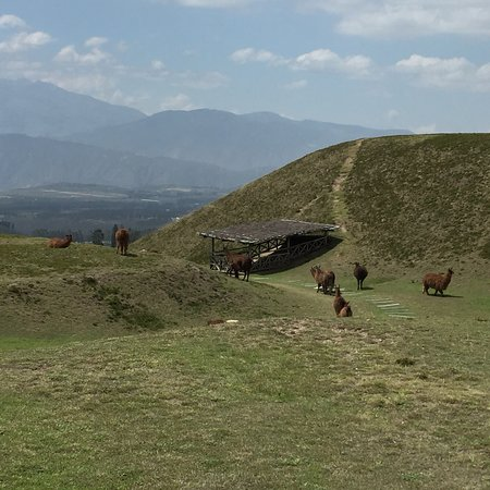 Pichincha Province, الإكوادور: photo2.jpg