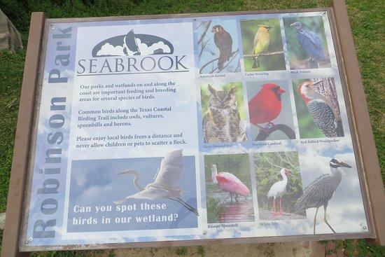 Seabrook照片