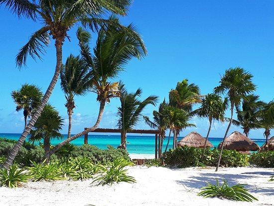 Secrets Maroma Beach Riviera Cancun Vista De La Hermosísima Playa Desde Piscina