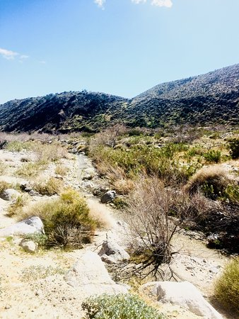Foto de Desert Hot Springs