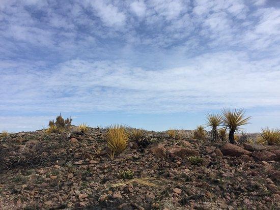 Fort Davis, TX: the landscape
