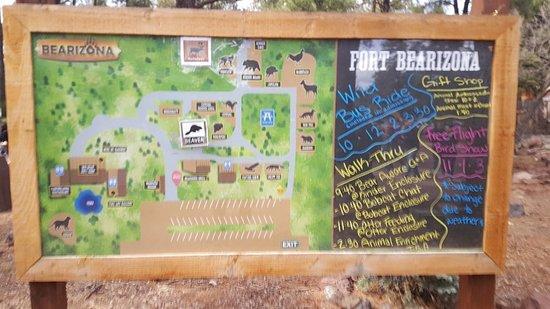 Bearizona Wildlife Park: 20180316_142456_large.jpg
