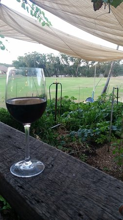 Guildford, Austrália: Sitting with a wine looking over the beautiful vege patch