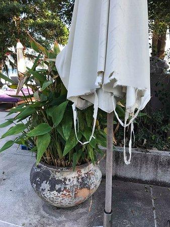 Mercure Koh Samui Beach Resort: Poolside