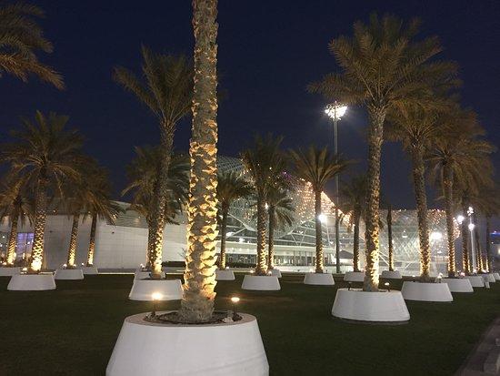 Yas Hotel Abu Dhabi: Vice