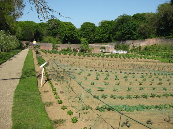 Wicca Person Picture Of Colclough Walled Garden Wexford