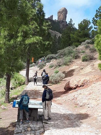 Approch to Roque Nublo from the car park