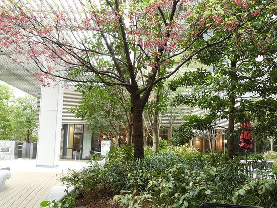 Iidabashi Sakura Terrace