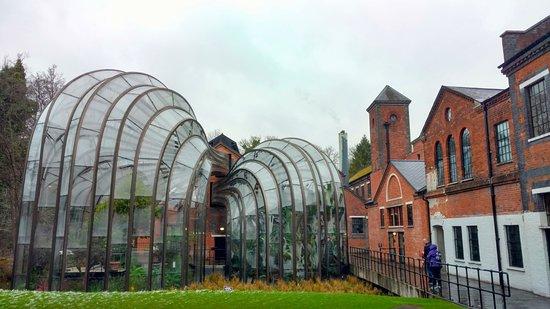 Whitchurch, UK: The greenhouse - designed by Thomas Heatherwick.
