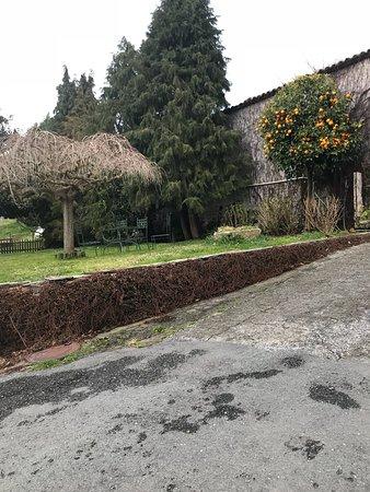 Galicia, España: photo3.jpg