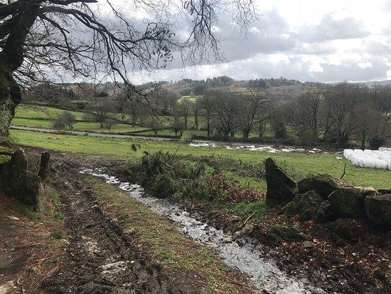 Galicia, España: photo5.jpg