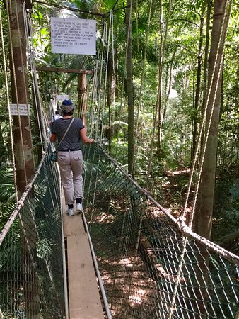 Taman Negara National Park & Taman Negara National Park (Pahang) - All You Need to Know Before ...