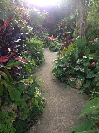 Hunte's Gardens: One of many secret paths to wonderful sanctuaries where you can sit and ponder....