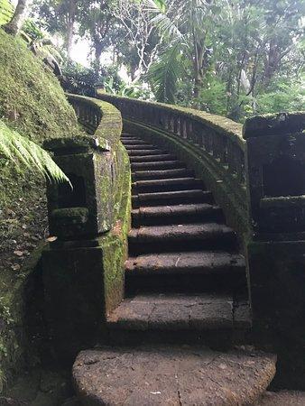 COMO Shambhala Estate, Bali-bild