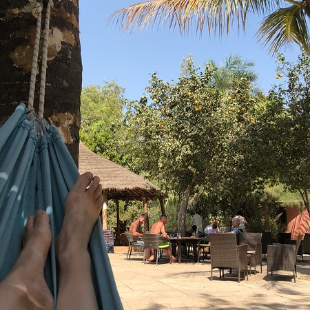 Gunjur, Gambia: Hammocks overlooking communal dining area