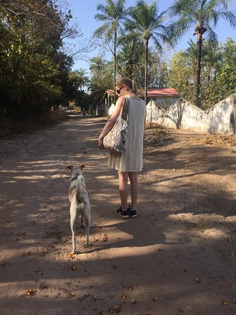 Gunjur, Gambia: Seven, Footsteps' dog, accompanies you to the beach - an easy 25 minute walk