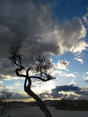 Wenden, Аризона: IMG_20180317_180607_large.jpg