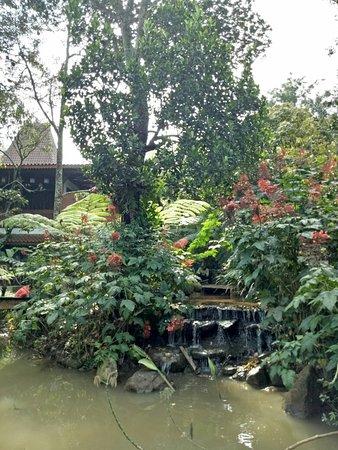 Jombang, Индонезия: IMG20180317084515_large.jpg