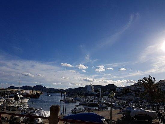 Heel vriendelijk met zicht op de haven