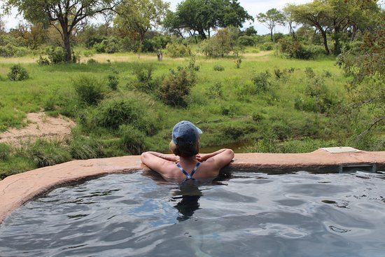Lukimbi Safari Lodge: We relaxed in the pool every day