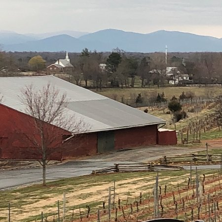 Barboursville Winery Tours