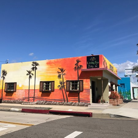 Oceanside, CA: Living Tea Brewing Co