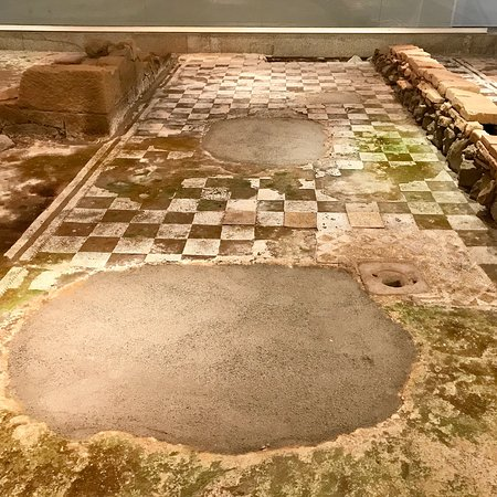 Museu D. Diogo de Sousa - Museum of Archeology: photo2.jpg