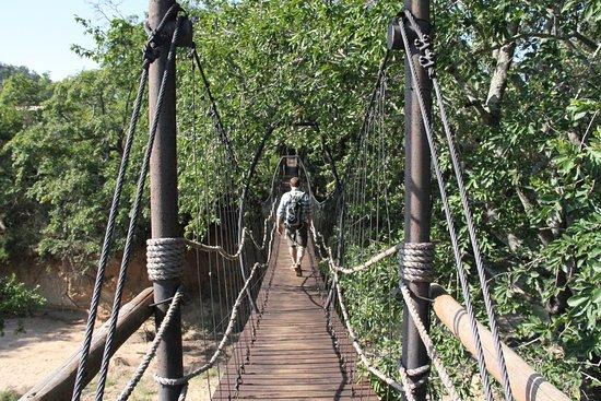 Ulusaba Private Game Reserve, Afrika Selatan: Swing bridge to our room