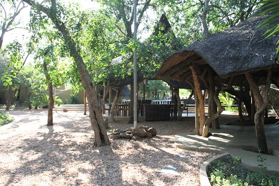 Ulusaba Private Game Reserve, Afrika Selatan: Outdoor dinner spot and pool
