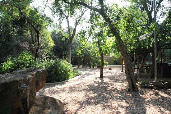 Ulusaba Private Game Reserve, Sudáfrica: Outdoor area