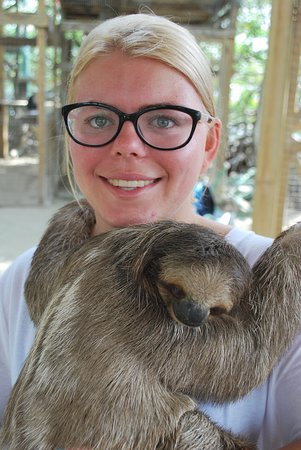 My daughter with Olivia Benson - yes, that's the sloth's name.
