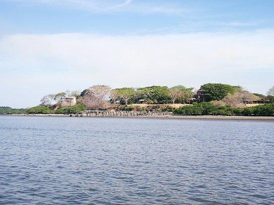 Manzanillo, Costa Rica: IMG_20180318_084740_large.jpg