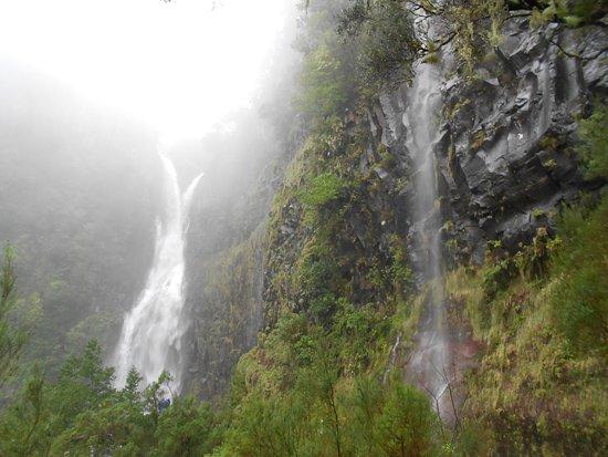 25 Fontes and Cascada da Risco : Cascades