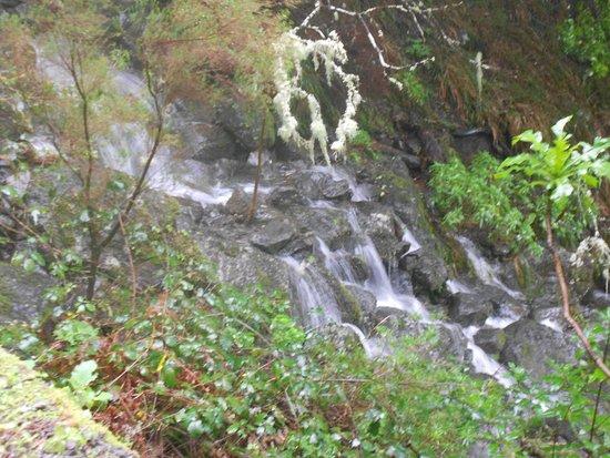 25 Fontes and Cascada da Risco : Cascade