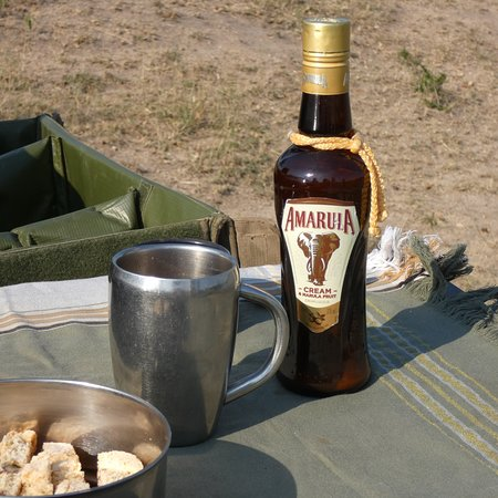 Ulusaba Safari Lodge: photo9.jpg