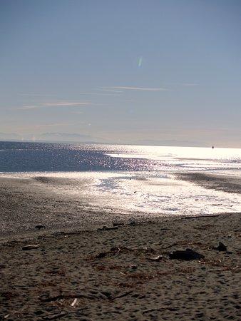 Centennial Beach: A sunny spring day
