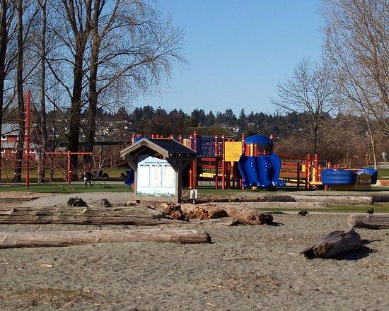 Centennial Beach: A place for the kids