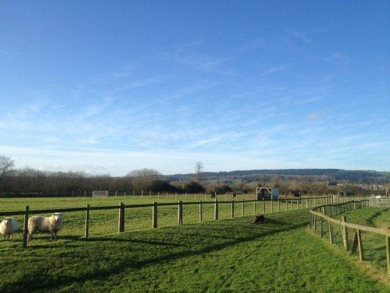 St Augustines Farm