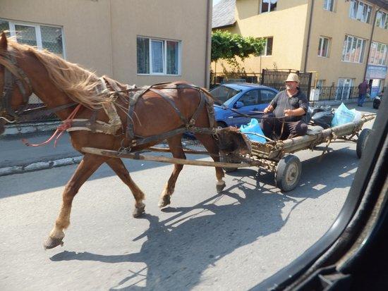 Carpathian Dreams: Yo quiero uno así!!!