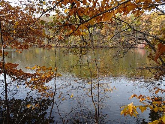 Niles, MI: St. Joe River 1