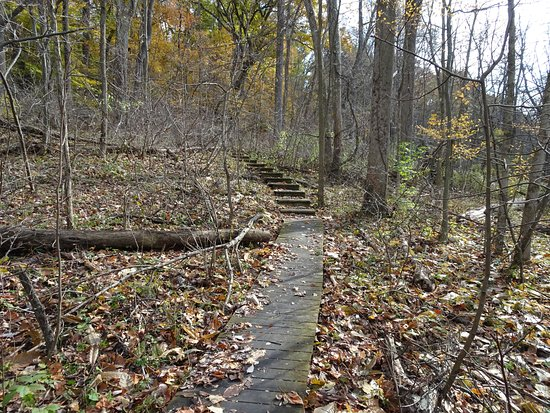 Niles, MI: Steps Uphill