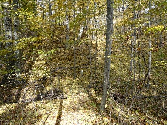Niles, MI: Fall Color Hiking 4